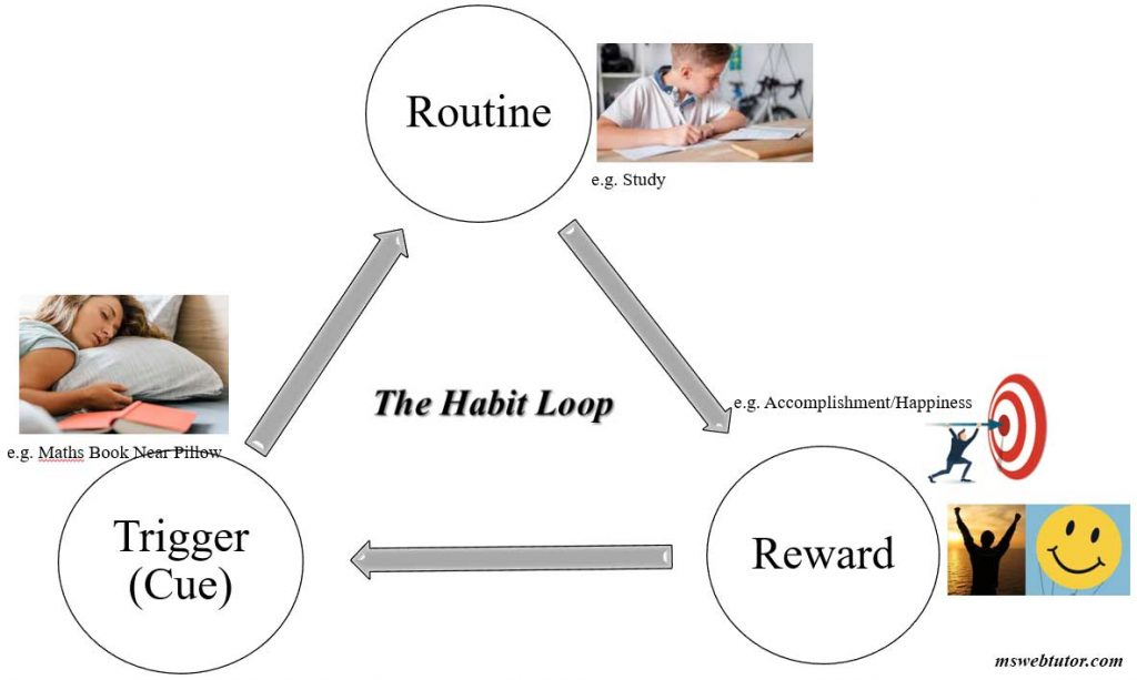 Habit Loop Study Routine